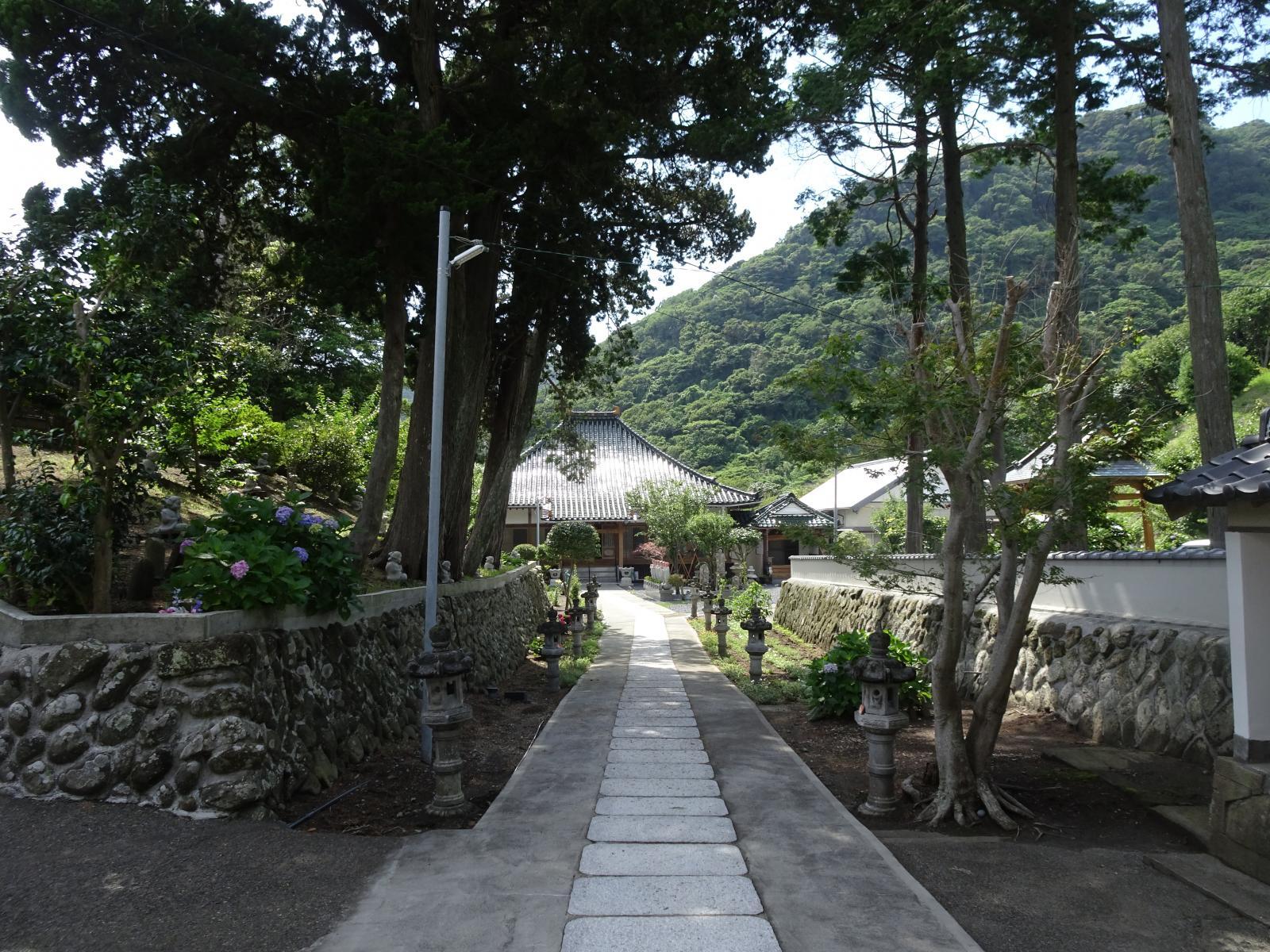 瑞雲山 海蔵寺(南伊豆 入間)